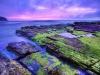 turimetta-beach-sydney-australia-16
