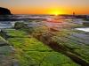 turimetta-beach-sydney-australia-7