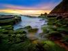 turimetta-beach-sydney-australia-9