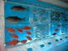 ledyanoy-akvarium-v-yaponii-2