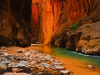 zion-national-park-11