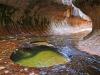 zion-national-park-26