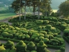 jardins-de-marqueyssac-1