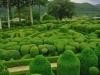 jardins-de-marqueyssac-10