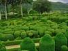 jardins-de-marqueyssac-15