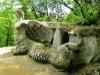 bomarzo-sacro-bosco-parco-dei-mostri-25