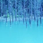 Бирюзовый пруд