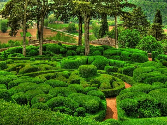 jardins-de-marqueyssac (7)