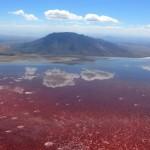 Природный феномен озера Натрон в Танзании …